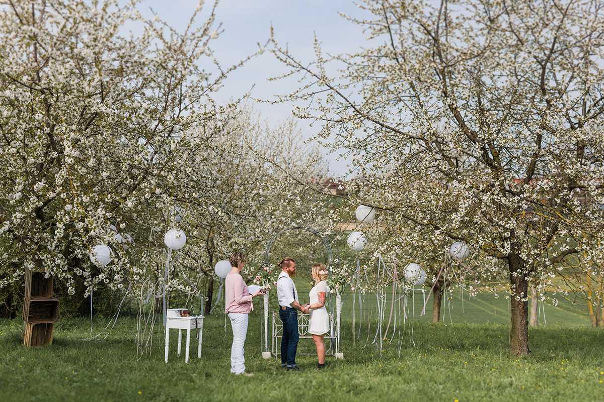Brautpaar mit Traurednerin auf gruener Wiese und Baeumen